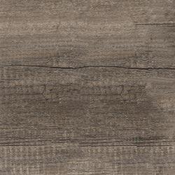Oak Carbon